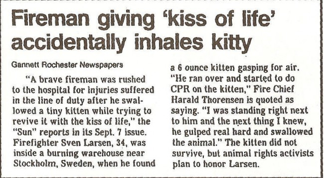 Don't give a kitten the kiss of life...
