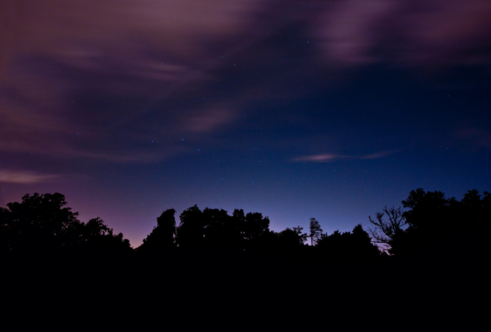 Starlit Silhouette, Sussex, 2009