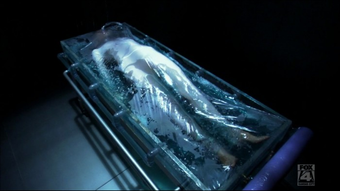 Seriously cool plastic wrap/gooey tank thing. Bit Matrixy. This is Sierra/Dichen Lachman (can't you tell?)