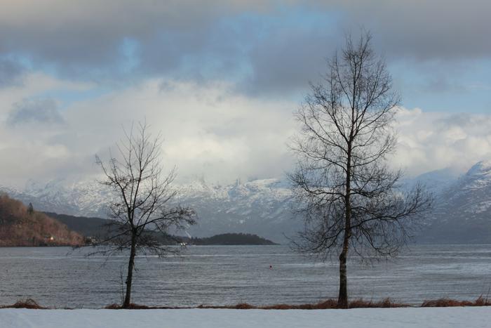 Hardanger Fjord, Strandebarm in Norway (Kvam/Hordaland)